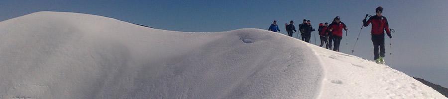 ski_top